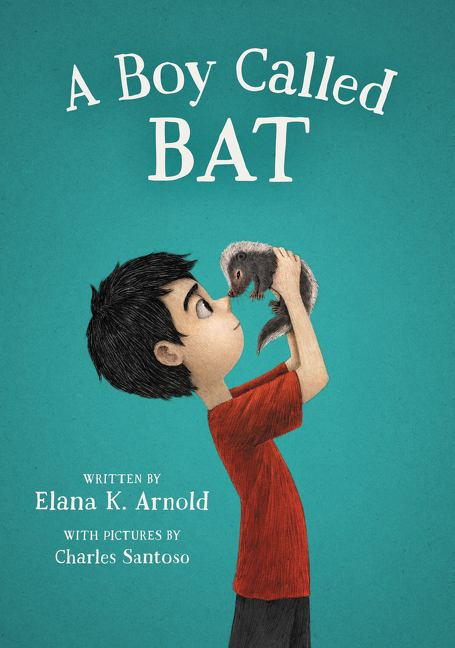 Book Cover: A boy Called Bat